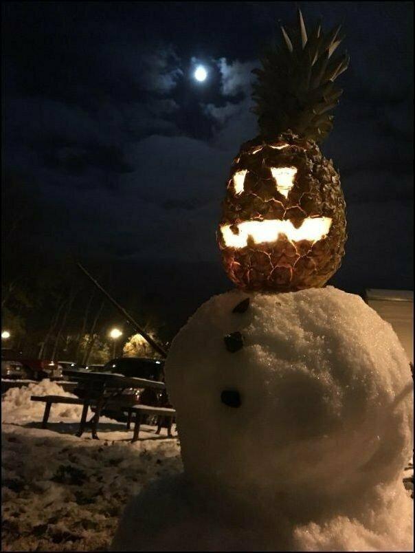 Теперь вы знаете, как выглядят американские снеговики