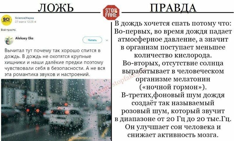В дождь хочется спасть потому что: 1. Падает атмосферное давление, 2. Прячется солнце и организм вырабатывает ночной гормон. 3. Шум дождя успокаивает и никакие хищники тут ни при чем