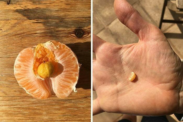 """""""Я почистил апельсин, а у него внутри оказался ещё один апельсин"""""""