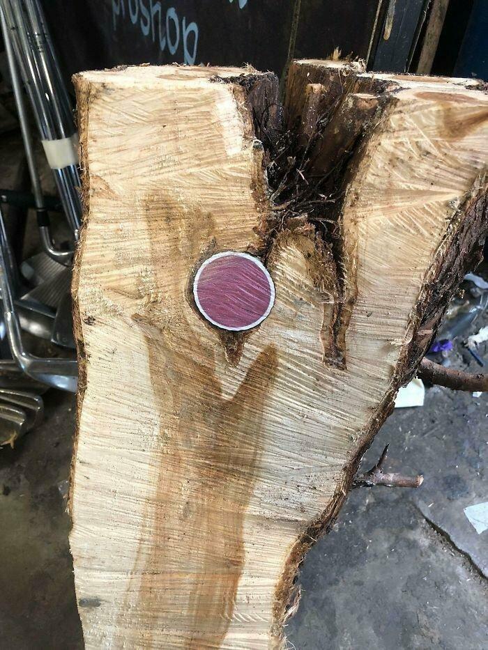 """""""Я нашел этот мяч для гольфа внутри дерева"""""""