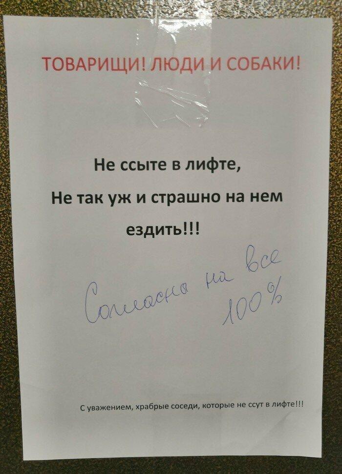 Лифт храбрых соседей