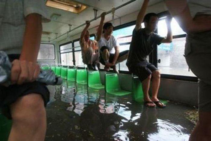 Неожиданности общественного транспорта