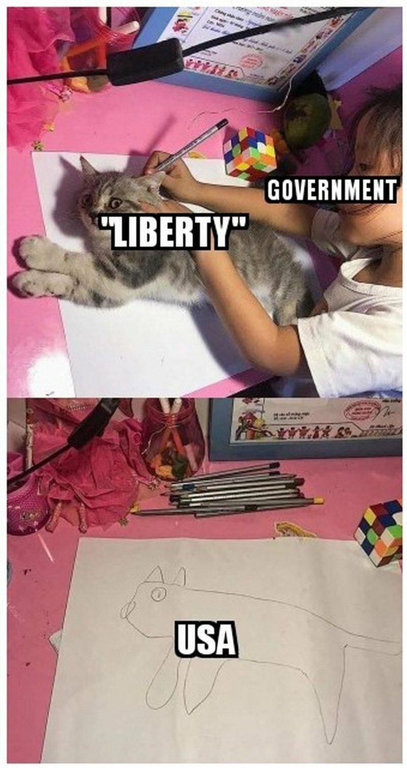 США и свобода