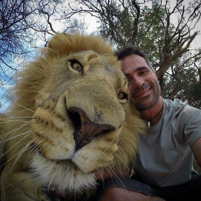 Голова льва и голова человека