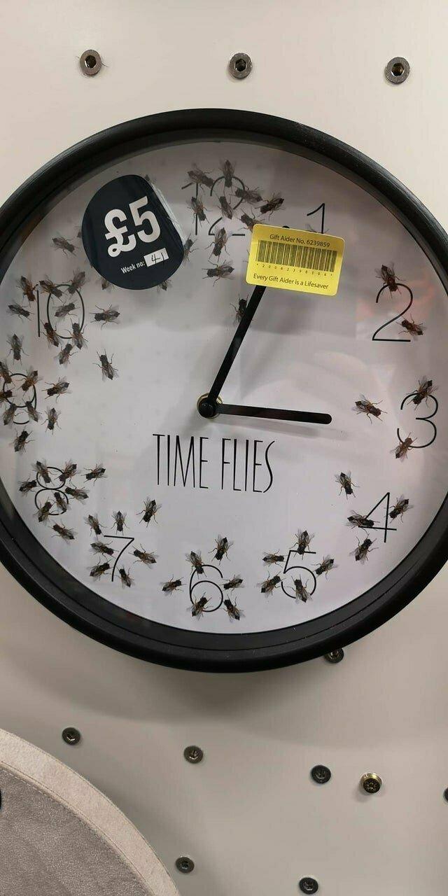 Кому пришла в голову идея сделать часы с мухами
