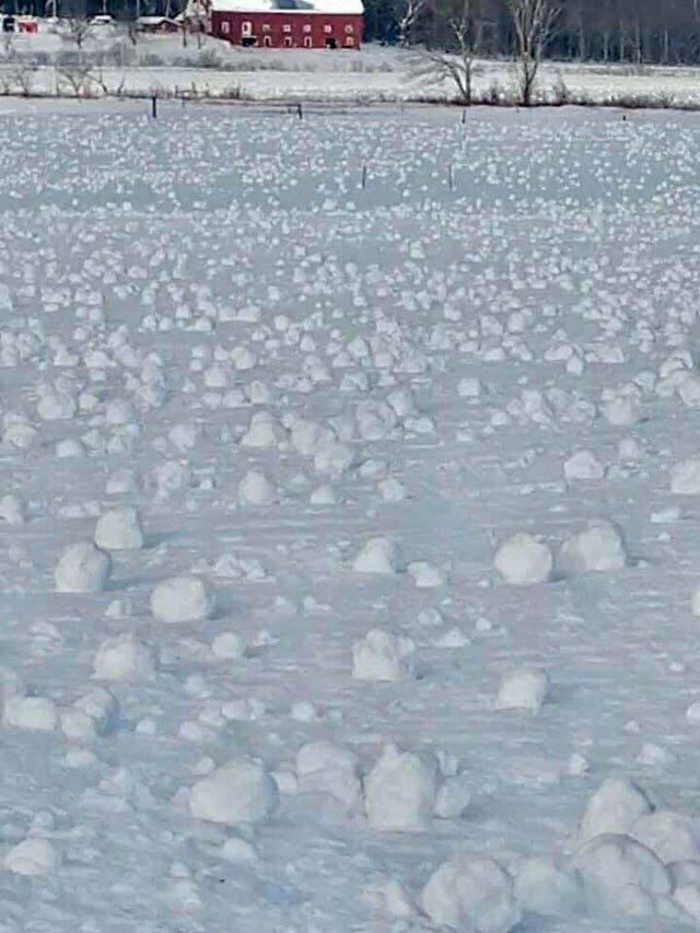 Во время ветреной погоды в штате Мэн снежки образовывались сами собой