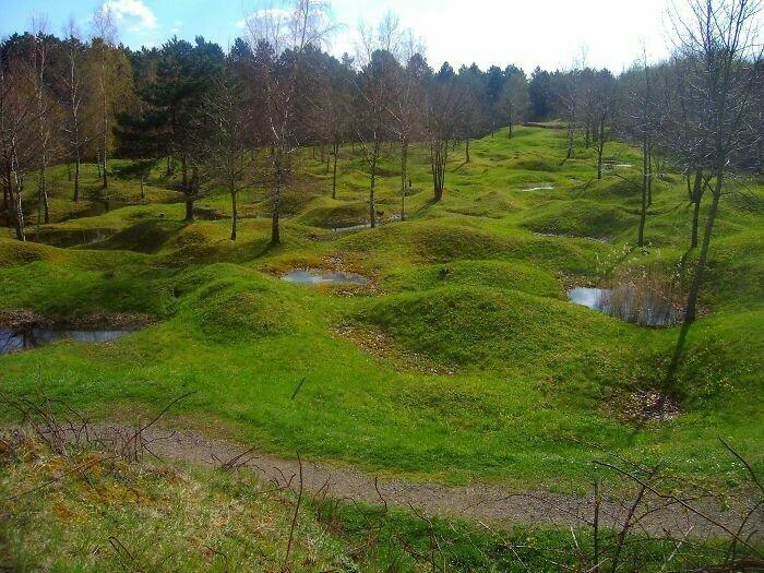 Так сегодня выглядит поле битвы при Вердене, где в 1916 году погибли более 700 тысяч человек