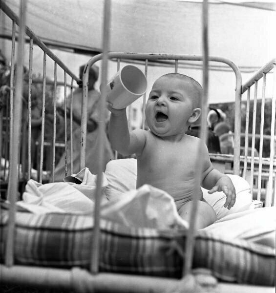 «Жарко!» 53-й детский санаторий Калининского райздрава г. Москвы. Всеволод Тарасевич,