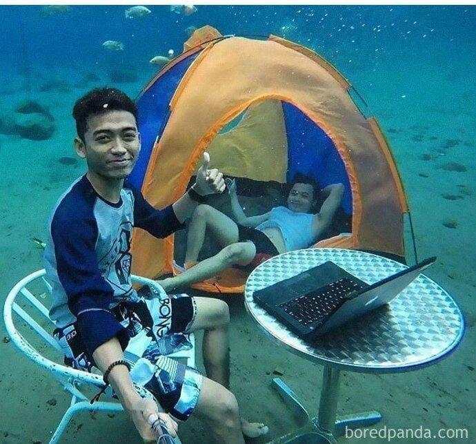 Морские биологи