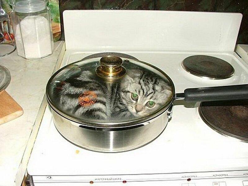 В этой квартире давно не пахло домашней едой!