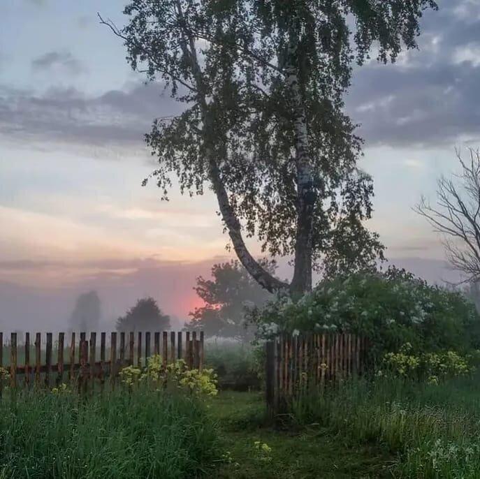 3. Туман