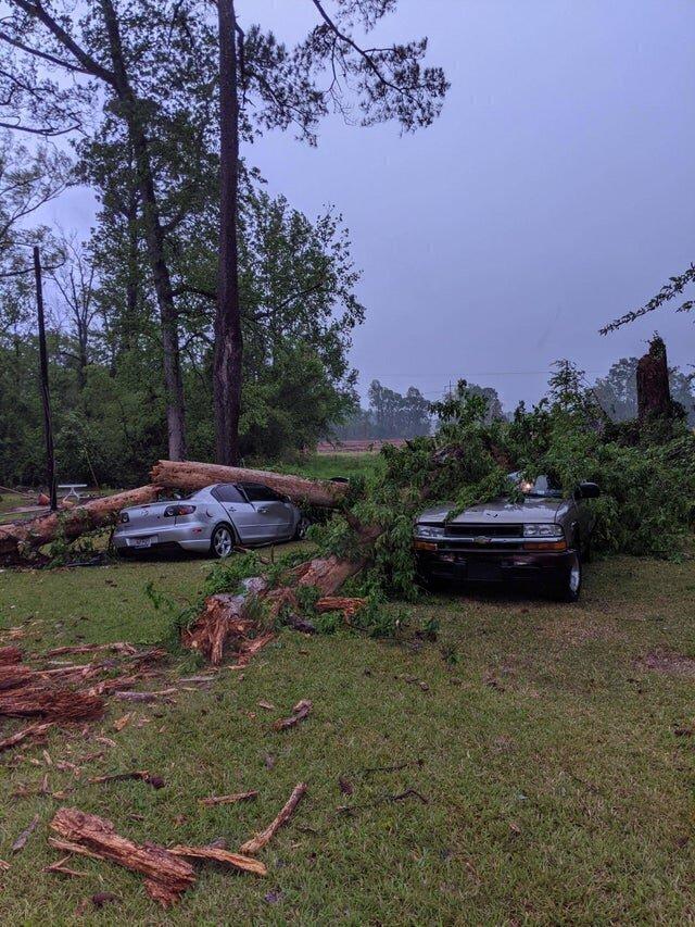 """2. """"После шторма деревья в округе упали только на наши машины"""""""