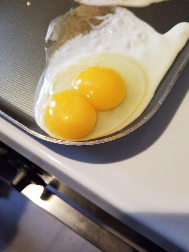 8. Два желтка в одном - чем не повод улыбнуться новому дню?