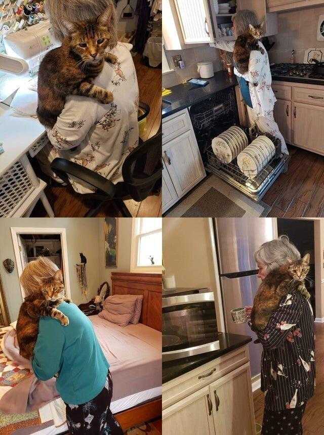 Помогут на кухне