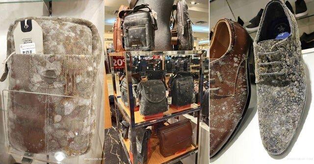 В Малайзии кожаные изделия в закрытых торговых центрах покрылись плесенью спустя 2 месяца
