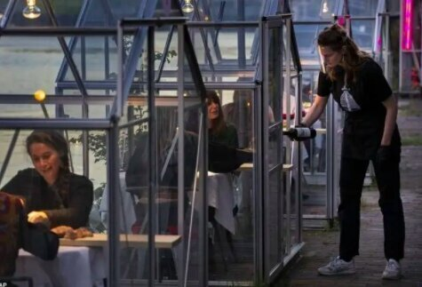 """В Амстердаме владельцы ресторана """"Mediamatic Biotoop"""" придумали способ, как можно ужинать во время пандемии: они сделали стеклянные кабинки для посетителей"""