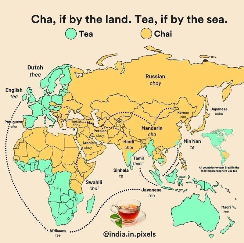"""13. """"Чай"""" - если чай доставляли по суше, """"Tea"""" - если по морю"""