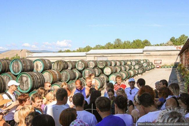 Мадера в Крыму: наши дни