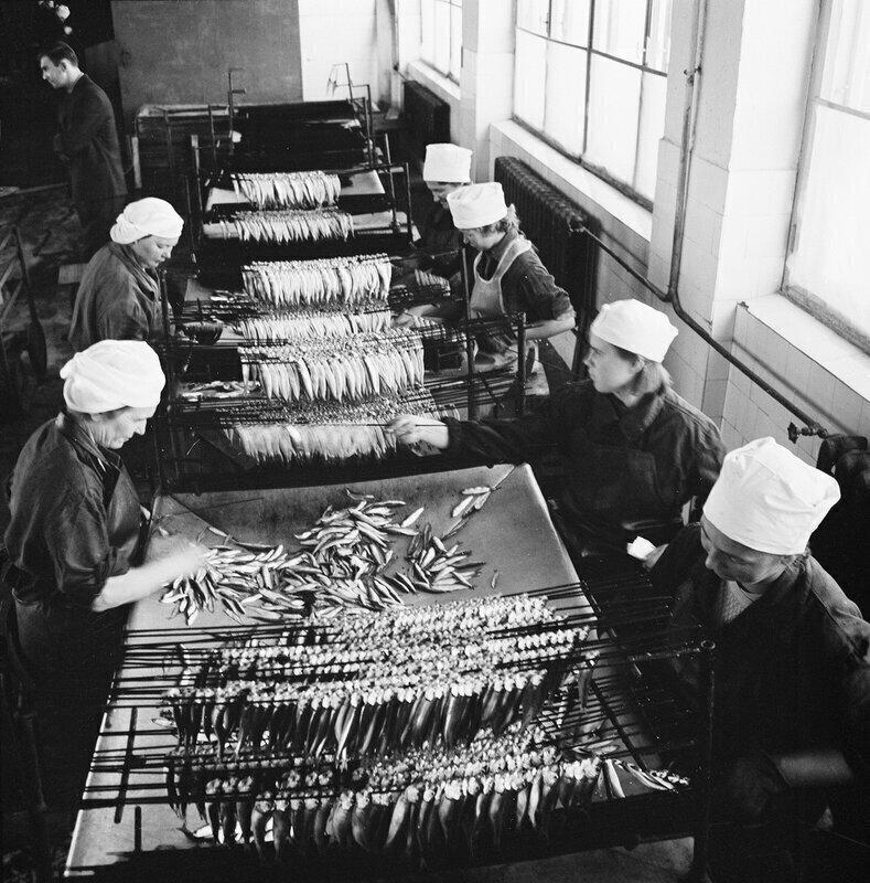 Консервный завод в Эстонской ССР, 1950-е годы