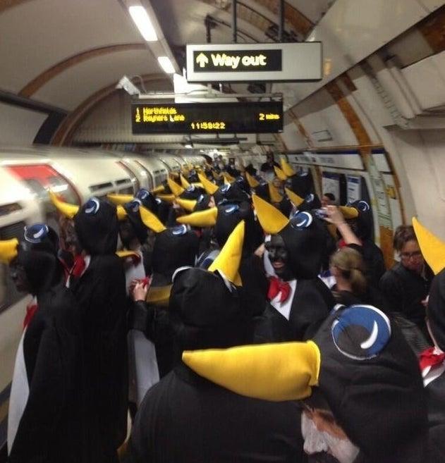 Станция пингвинья
