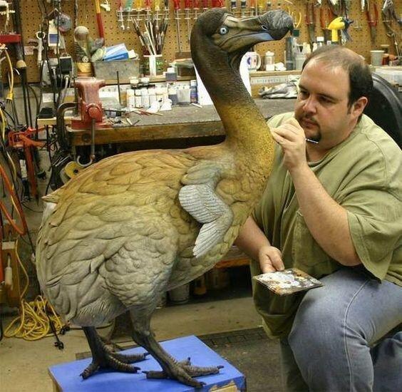 Птичка, к сожалению, уже вымершая, Додо