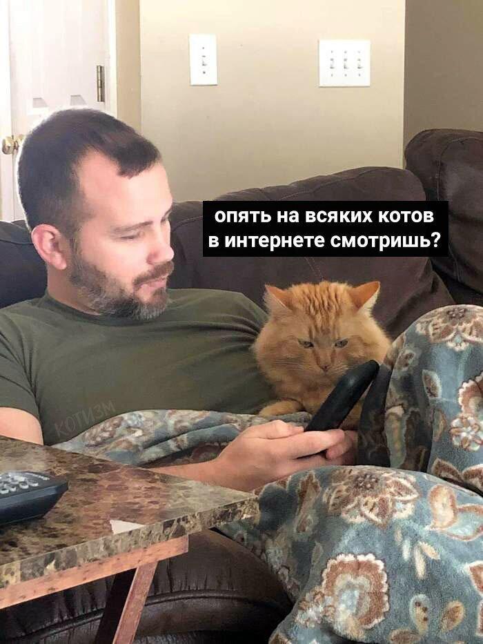Девушки, как кошки