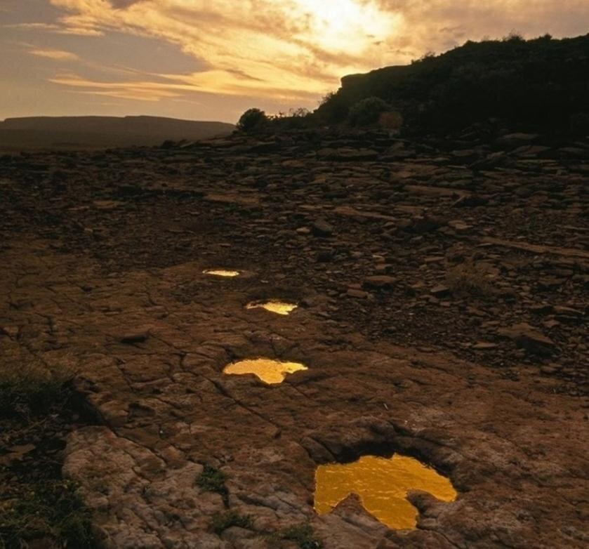 Эль-Чокон, Аргентина, сохранились следы динозавров
