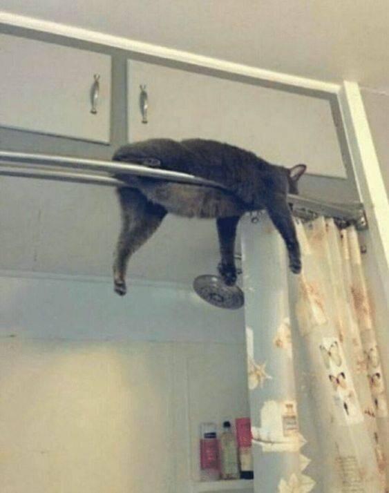 Каждый раз падает, и всё равно там спит