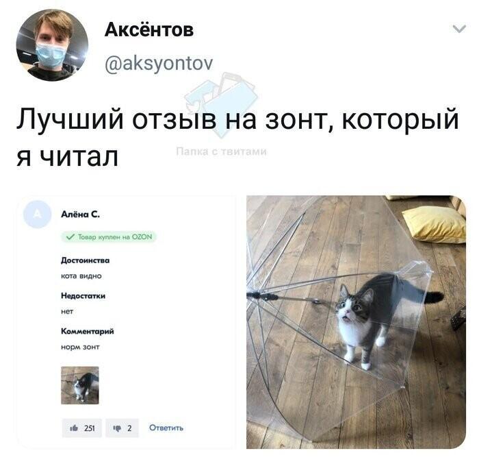 Главное, что видно кота