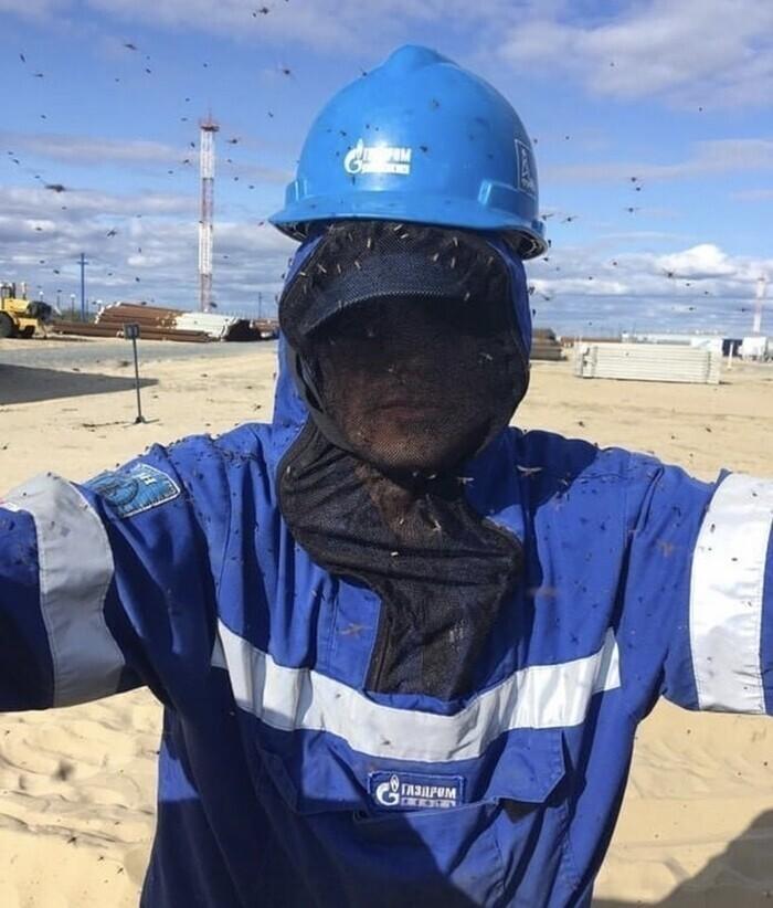 Как живется типичному отечественному вахтовому работнику
