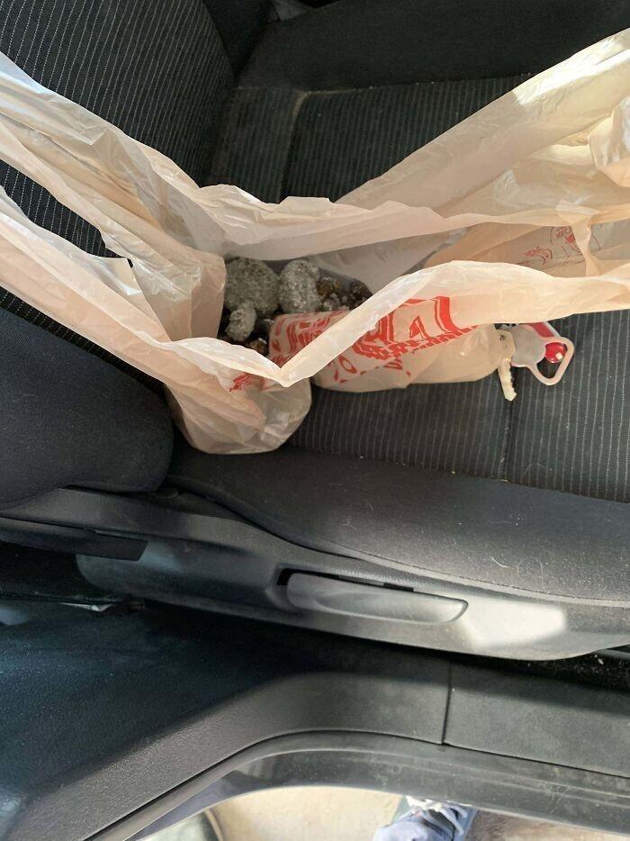 """""""Взял утром пакет с использованным наполнителем для кошачьего туалета, чтобы выбросить по дороге. А еще взял пакет с ланчем. Угадайте, какой из пакетов я привез с собой на работу"""""""