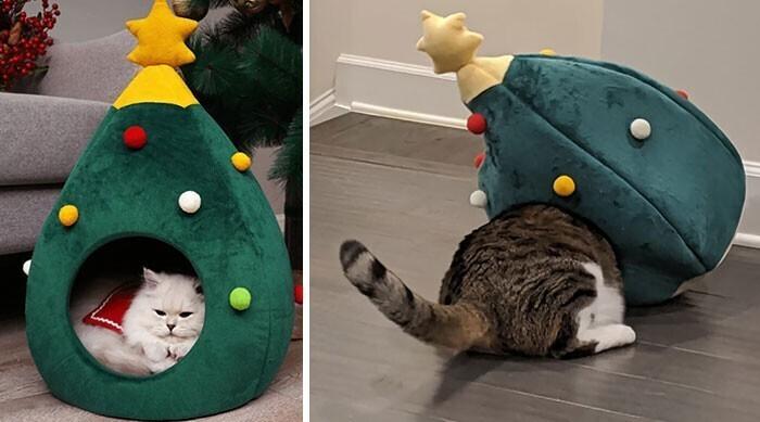 """""""Я знаю, что кот у меня крупный, поэтому специально заказала для него домик самого большого размера"""""""