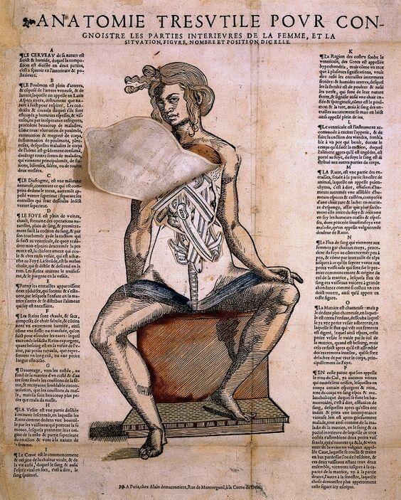 Анатомические учебники и книги