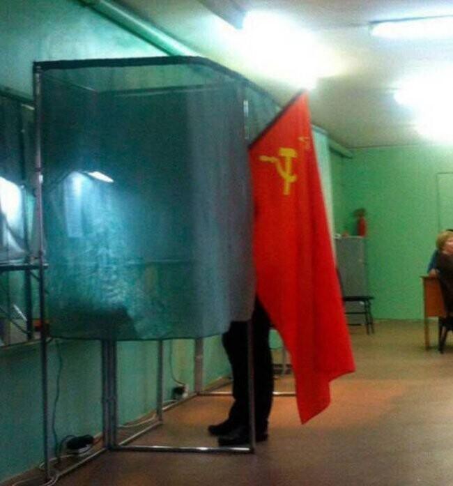 Проголосовал