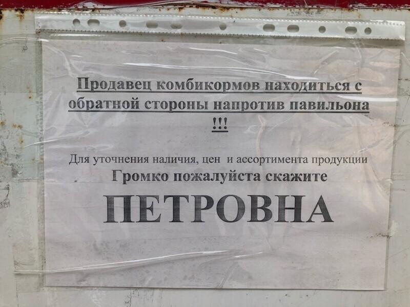 "Пароль: ""Петровна!"""
