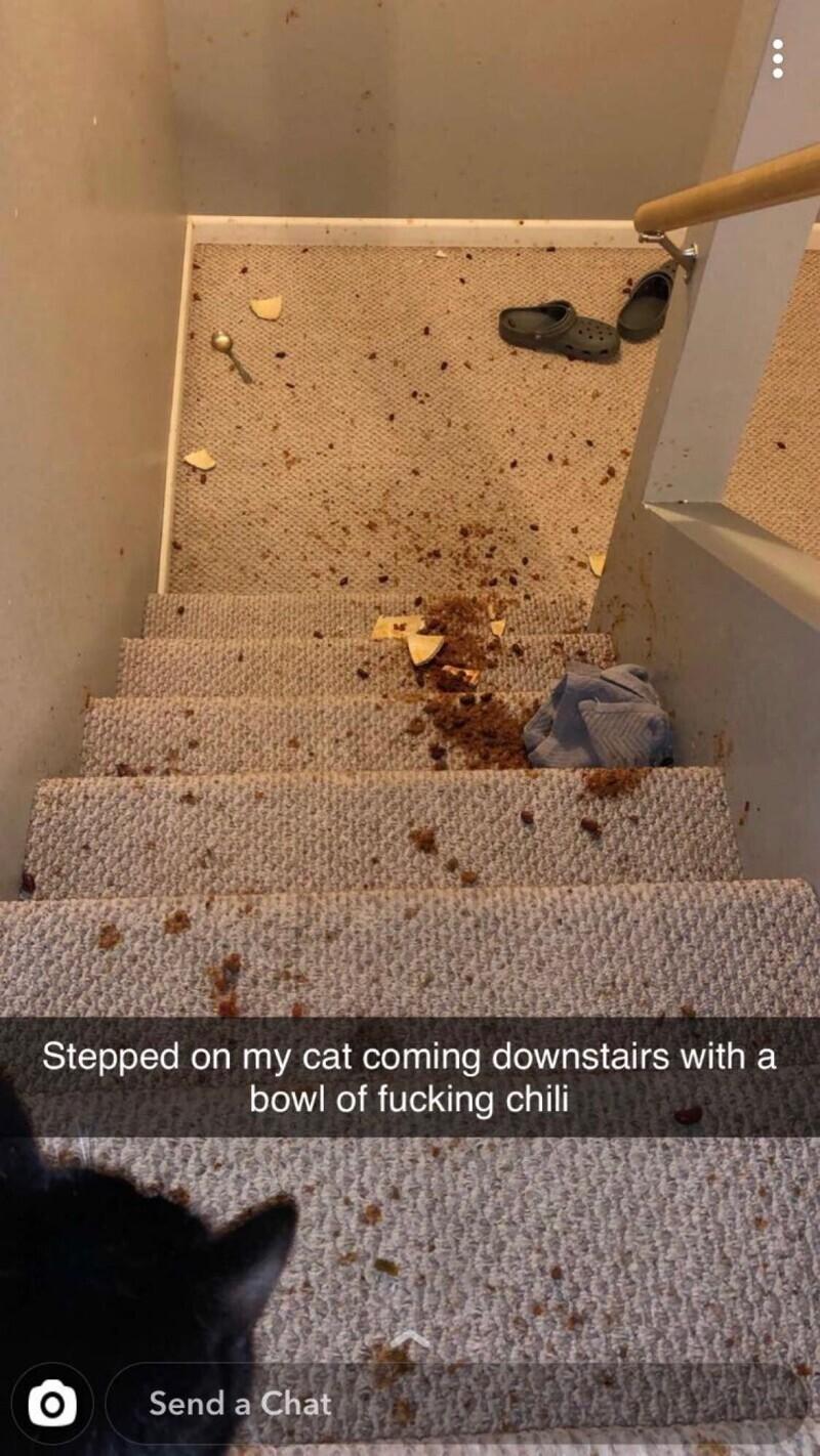 """""""Наступил на кошку, когда спускался вниз по лестнице с миской долбаного чили"""""""