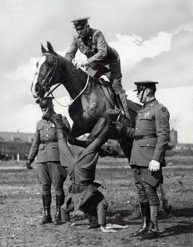 Показательные выступления кавалерии