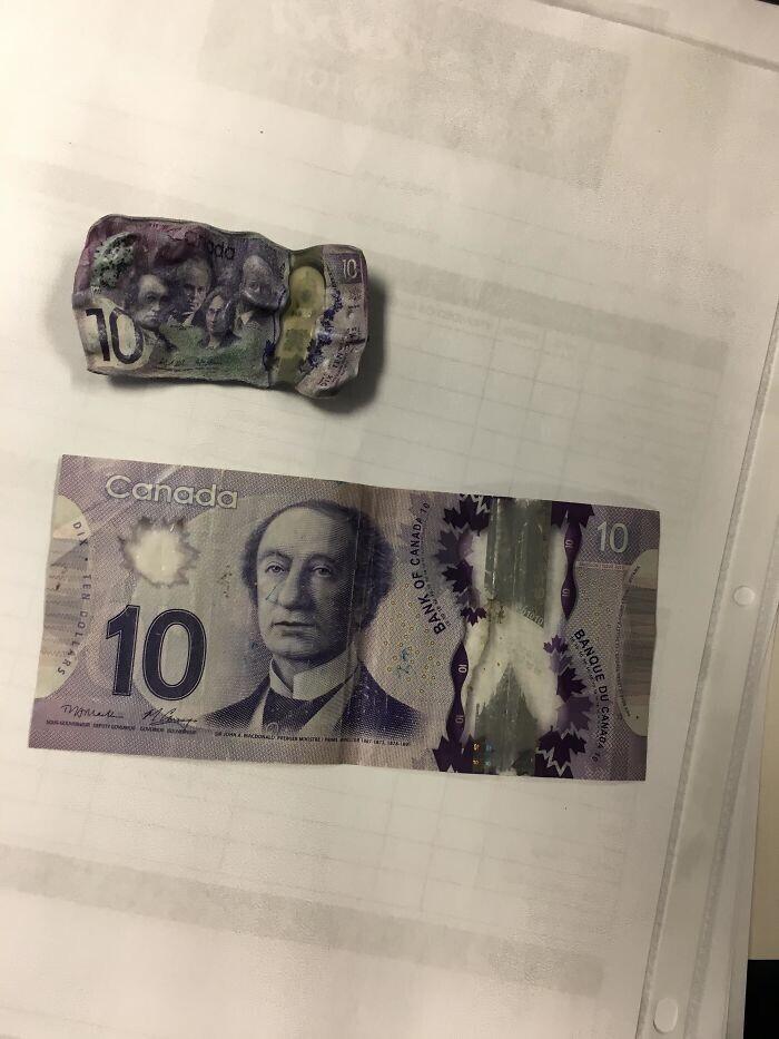 """28. """"Случайно постирал 10-долларовую банкноту"""""""