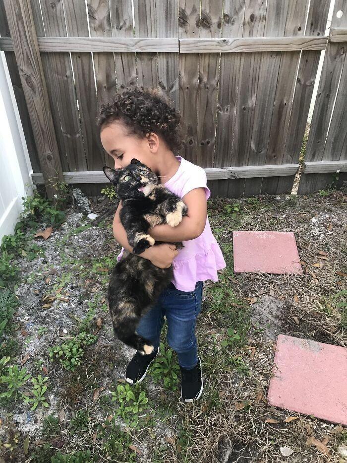 """""""Пыталась научить дочку правильно держать кошку. Реакция кошки бесценна"""""""