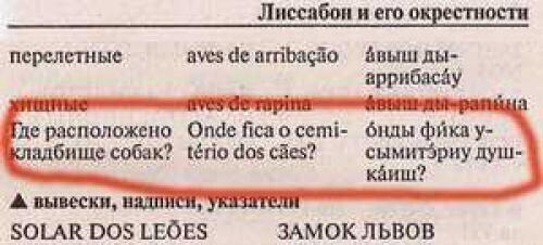 Те, кто соберется в Португалию, внимание! Этот вопрос поможет вам наладить коммуникацию с местными
