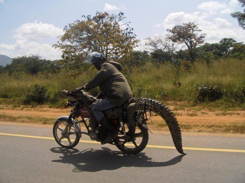 Это Африка, детка