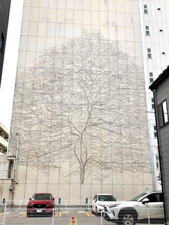 Рисунок дерева на стене создала виноградная лоза
