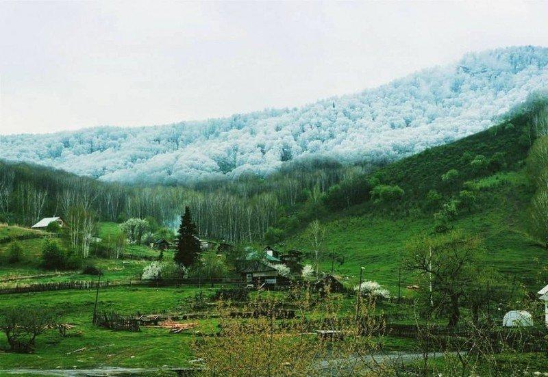 Зеленая долина в окружении заснеженных гор
