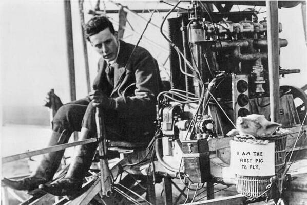 Первая свинья, совершившая воздушный полет, 1909 год