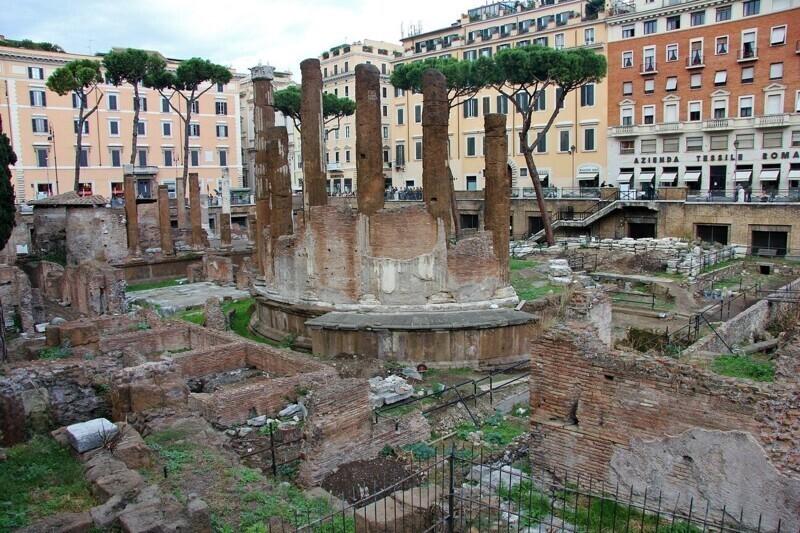 Место, где был убит Юлий Цезарь, теперь является убежищем для кошек