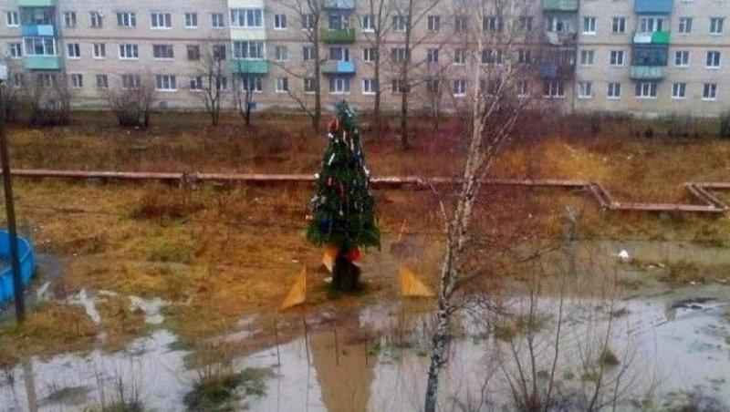 Колоритные фото с российских просторов