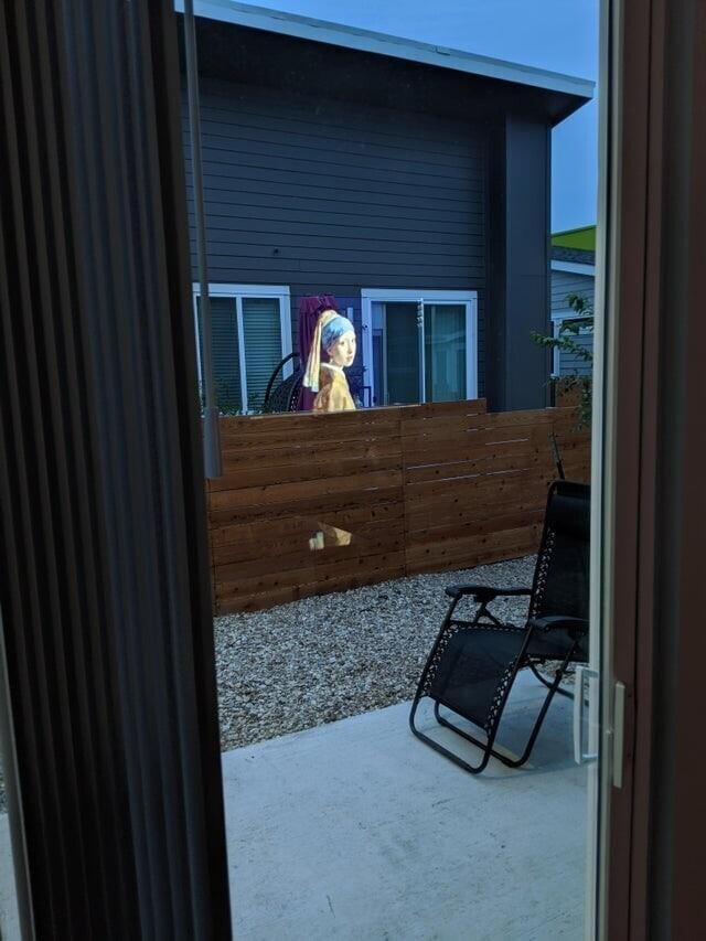 «Из-за отражения моего телевизора создается впечатление, что Девушка с жемчужной сережкой находится у меня на заднем дворе»