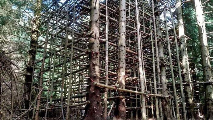 Похожая на леса конструкция, найдена в Чехии. Рядом была площадка для пейнтбола/страйкбола. А это для чего?