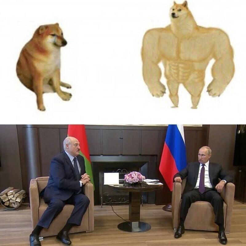 Интернет-тролли обратили внимание на то, в каких позах сидели Путин и Лукашенко во время встречи. И тут понеслось...
