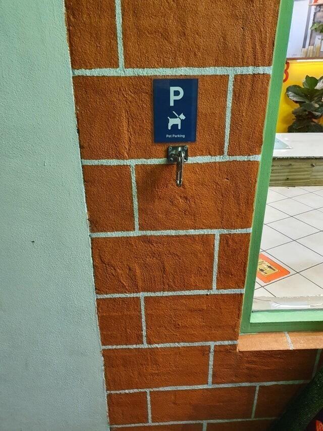 «Парковка для собак» возле столовой, где готовят еду навынос